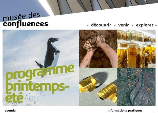 Site officiel musée des Confluences
