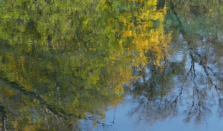lac, plan d'eau