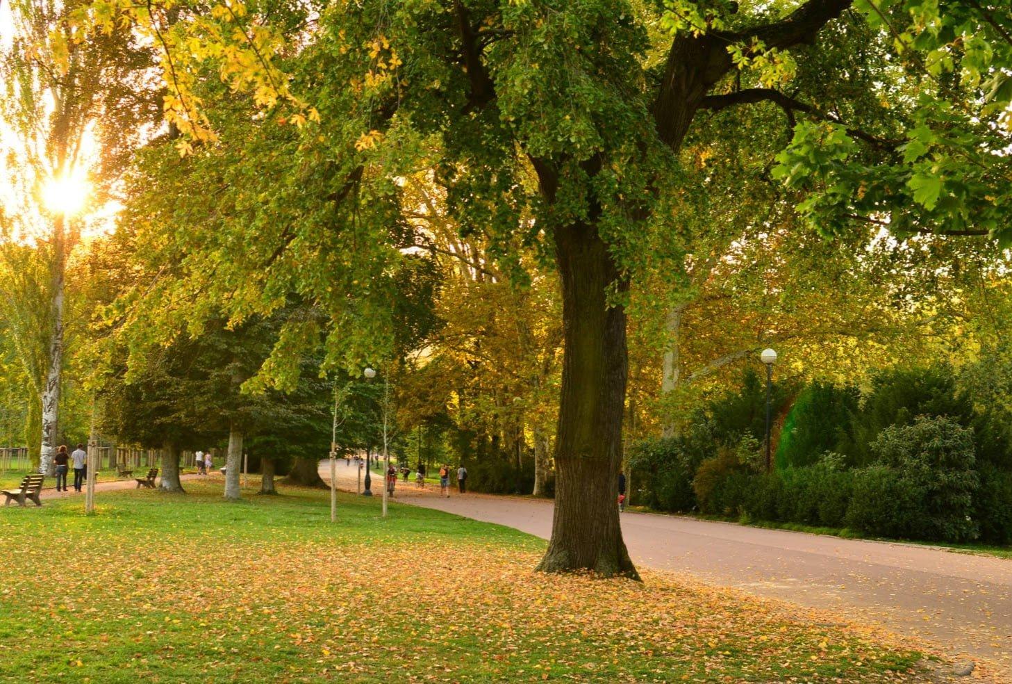 Allée du parc de la tête d'or, Lyon