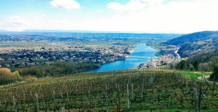 AOC Saint-Joseph, vins de la vallée du Rhône